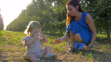 mama : little child girl takes mineral glass of water from mother hands sitting on grass at orchard during fruit crop season on autumn day
