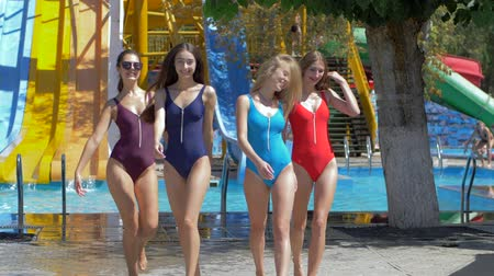 plavky : group of Friends into colored Swimsuit have fun at aquapark on background waterslides on summer weekend Dostupné videozáznamy