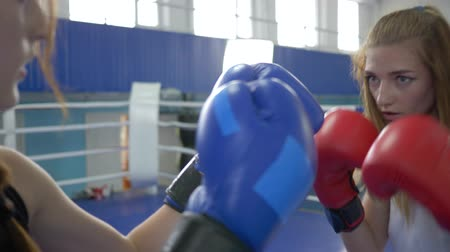 konkurenti : boxing, strong women in gloved training and fighting together on ring in sports club