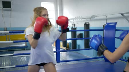 contestant : sport and people, two young women exercising and fighting on boxing ring in gym Stock Footage
