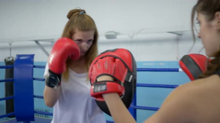 combativo : sports hobby, young woman holds boxing paws for strong girl who beats on ring in gym