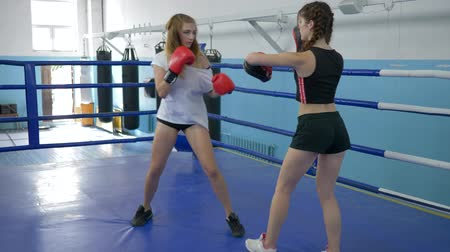 бокс : sports young women train in short shorts in gym, girl takes blows on boxing paws of a strong female in gloved on ring