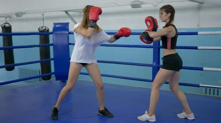 contestant : athletic girls train in short shorts in gym, girl takes blows on boxing paws of a strong female in gloved on ring Stock Footage