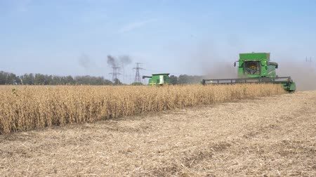 soya : KHERSON, UKRAINE - OCTOBER 01, 2018: harvesting, agricultural machinery gather yield of soya in field in harvest season against blue sky