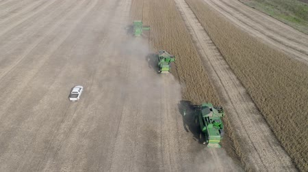 soya : KHERSON, UKRAINE - OCTOBER 01, 2018: agriculture, aerial view of automobile and combines go across the field in dust and harvest the autumn soybean crop Stock Footage