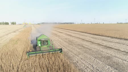 soya : KHERSON, UKRAINE - OCTOBER 01, 2018: drone view of agricultural machines during the harvest of soybean works in autumn season on the field in dust