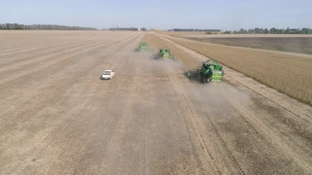 soya : KHERSON, UKRAINE - OCTOBER 01, 2018: aerial view on combine harvester and car in the dust works on the soybean field in autumn day