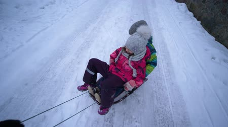 trenó : happy children sledding, hand quickly carries sled with a boy and girl on snowy road