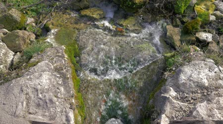 beken : streams of pure water flow over mossy stones in wild