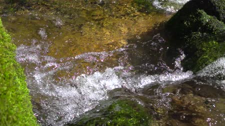 rivulet : clear water of waterfall stream runs through large stones covered with green moss close up in Slow motion