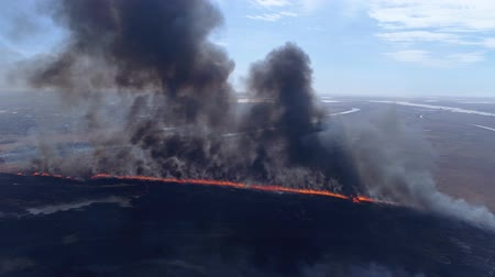 extinguishing : Ecology disaster in nature, large fire fast moving by dry field with black smoke going up to heaven near river, drone view Stock Footage