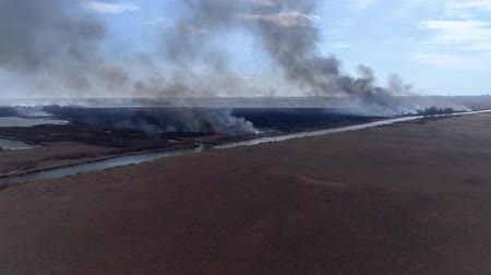 extinguishing : nature disaster, large flames fast moving by dry field with smoke going up to heaven near river, view from above Stock Footage