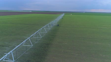 irigace : irrigation equipment for green rapeseed watering on the agriculture field, drone view on countryside