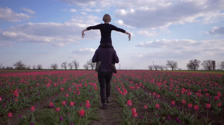 floweret : young dad with child boy spread arms to side sitting on shoulders run around across flowers meadow of tulips against sky Stock Footage