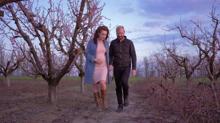 абрикосы : beautiful happy pregnant woman goes hand in hand with husband father of unborn child in flowering orchard in pruning season