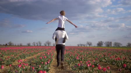 floweret : family in field, happy father with teen son spread arms to side sitting on shoulders run around across flowers plantation of tulips against sky Stock Footage