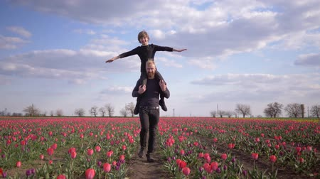 小花 : happy childhood, Germans man with smiling kid boy spread arms to side sitting on shoulders walk across floret meadow of tulips against sky 動画素材