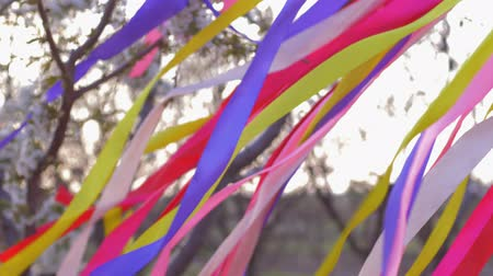 小花 : many colored bright ribbons fly in wind outdoors in blooming garden close-up