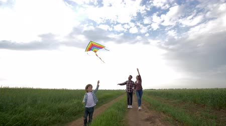 omini : family weekend, young mother and father with son enjoy walk with flying kite during weekend in countryside on background of beautiful sky Filmati Stock