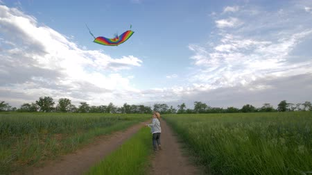 коршун : happy childhood on nature, running little boy in hat and plaid shirt plays with flying kite in slow motion at green field on background of sky