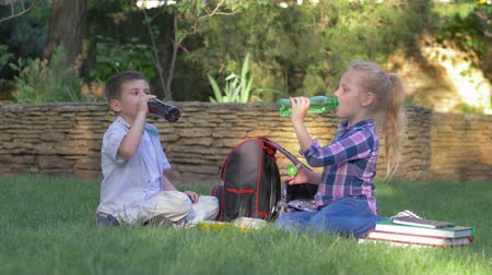 schoolyard : happy young friends together drink juice from bottles sitting near backpacks on the lawn during lunch in schoolyard Stock Footage