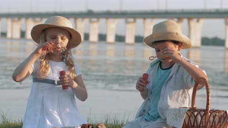 キラリと光る : children entertainment, sweet lovely child boy and girl in straw hats blow bubbles during picnic in nature near river 動画素材