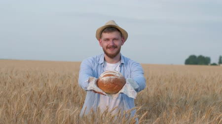 amadurecida : agronomist grain grower, young man gives you delicious homemade bread smiling at camera in grain harvest autumn meadow