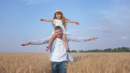 outing : happy rural childhood, cheerful young father carries his beloved child girl on shoulders and goes spreading hands to the side making as plane in yield season of sunny grain oat field against blue sky