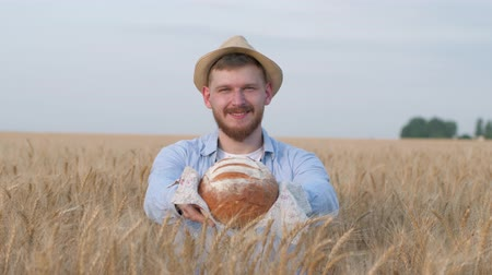 grain bread : portrait of sucessful agronomist, young man gives you freshly baked bread and smiles at camera in wheat crop field during harvest autumn season Stock Footage