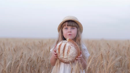 oats : bread grower kid girl, small fair haired farmer daughter bites tasty baked bread and smiles standing in golden harvest grain barley field against sky