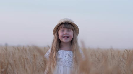 oats : happy country childhood, little cute fair haired child girl smiles standing during family weekend in yellow dry grain barley spikes of yield field against sky