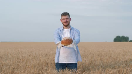 verim : harvesting of young agronomist, happy man gives you freshly baked bread and smiles at camera standing in matured grain wheat field during crop autumn season