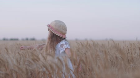 outing : joyful village childhood, little cute kid girl in white dress and straw hat spins touching reaped grain oat spikes in golden bread field at harvest season against sky Stock Footage