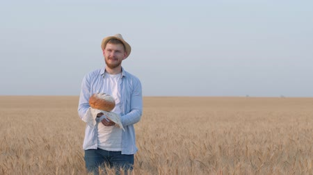 amadurecida : perspective agronomist, happy guy holds bread in his hand, smell it and shows with hand expanse of grain wheat field in yield autumn season