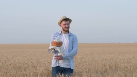 amadurecida : tasty smell of bread, young man holds freshly baked bread in his hand, smell it and presents with hand expanse of grain barley field in yield autumn season against sky Stock Footage