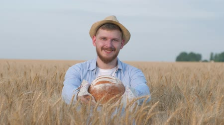agronomist : young happy grain grower, handsome man in straw hat gives you at camera tasty baked bread and smiles standing in field of golden oat spikes during yield season Stock Footage
