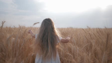 блаженство : small female child runs among ripe ears of wheat field against the background of blue heaven during harvest season