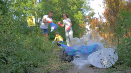 catástrofe : Ecological disaster, female and male with little girl collects refuse into trash bag in unfocused while cleaning nature from plastic and polyethylene in green grass close-up