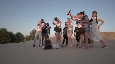 vocação : KHERSON, UKRAINE- JULY 04, 2019: group of young creative guys with cameras during fashion workshop for photographers shoot young beautiful couple in luxurious outfits in an unusual pose, in desert on the sunset