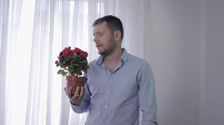 zsebkendő : respiratory allergy, man with flower in his hands suffers from sensitivity to pollen of plants constantly sneezes and wipes his face with a handkerchief