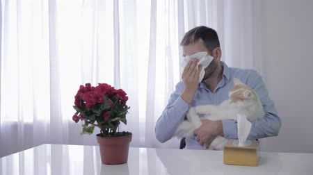 zsebkendő : allergic reaction, a sick male plays with an animal and sneezes from the fluff and wipes with a handkerchief Stock mozgókép