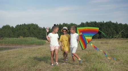 kayran : happy weekend of little friends, joyful kids have fun walking in green meadow with kite on background of forest and blue lake during summer holidays