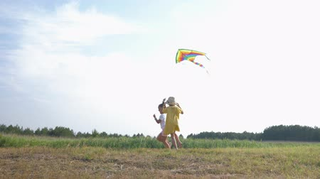 kayran : outdoor play, beautiful little girls actively spend time outdoors playing with a kite in forest glade during country vacation against the blue sky Stok Video