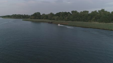 kamış : aerial view on sports person rides on board behind motorboat along river in slow motion at open air in summer evening Stok Video