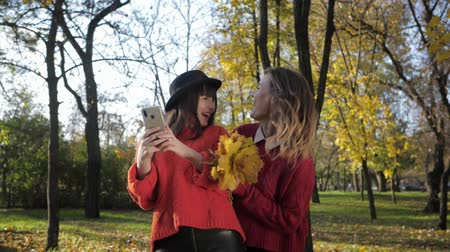 fiatalos : beautiful girls have fun in the autumn park throw leaves and take a selfie on a cell phone in the fall season
