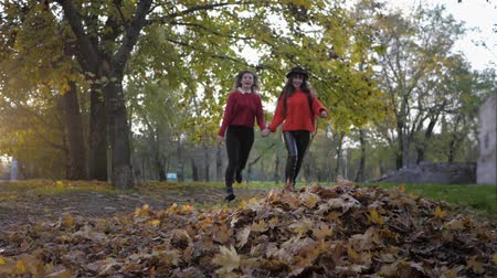 fleet : friendships, two beautiful smiling girlfriends run holding hands and throw leaves in the autumn park in the fall season