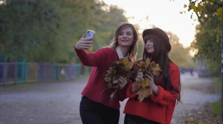 regozijo : girls in park, portrait of beautiful young women posing for a selfie toss up leaves in autumn parkland during leaf fall Stock Footage
