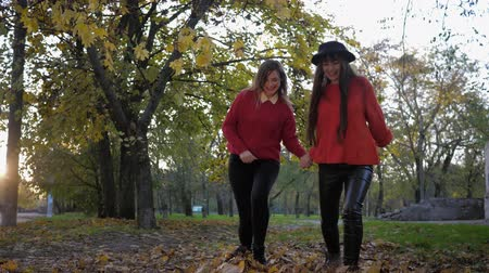 fleet : autumn entertainments, smiling laughing young women have fun run holding hands and scatter yellow fallen leaves feet while walking autumn park in the fall season