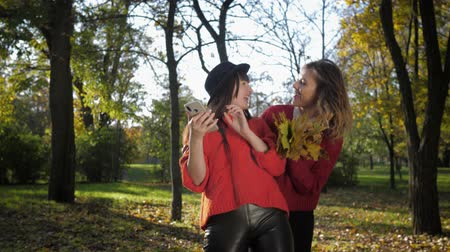 fiatalos : autumn time, attractive smiling young female girlfriends take a selfie on a smartphone and toss a bouquet of yellow leaves in the sun on a walk together during leaf fall
