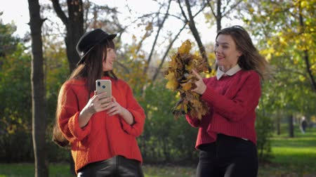 flotta : joyful girlfriends, lovely young women girlfriends take selfies in autumn pack on the background of fallen leaves while relaxing outdoors Filmati Stock